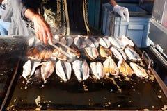 Pescados fritos del bonito Fotos de archivo libres de regalías