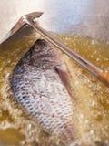 Pescados fritos grandes en un cierre del sartén para arriba imagen de archivo