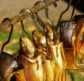 Pescados fumados Foto de archivo libre de regalías