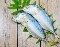 Pescados gemelos Imagen de archivo libre de regalías