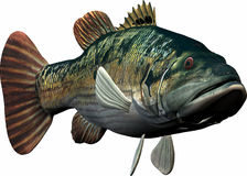 Pescados grandes ilustración del vector