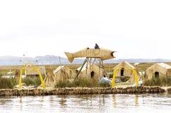 Pescados grandes en la isla de Uros Fotografía de archivo