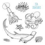 Pescados o pulpo y calamar, calamari de la criatura del mar lionfish rojo y gran tiburón de hammerhead mano grabada dibujada en v libre illustration