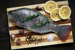 Pescados para cocer en el horno Imágenes de archivo libres de regalías