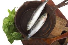 Pescados para la cena imagenes de archivo