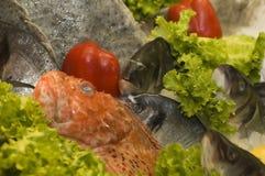 Pescados para la venta Imagen de archivo libre de regalías