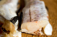 Pescados, pollock de los leucomas, pollock de Alaska Imágenes de archivo libres de regalías