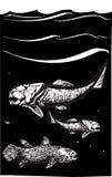 Pescados prehistóricos Fotografía de archivo