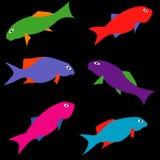 Pescados prehistóricos de Paralepidotus: En tonos ácidos libre illustration