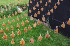 Pescados que cuelgan para secarse Imágenes de archivo libres de regalías