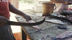 Pescados que matan del cocinero en la tabla de cortar el pescador está cortando los pescados La manera de vida tradicional en Asi almacen de metraje de vídeo