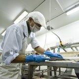 Pescados que procesan la fabricación fotografía de archivo