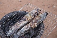 Pescados rayados del snakehead de la parrilla con la sal Foto de archivo libre de regalías