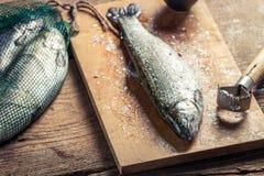Pescados recién pescados para la cena Fotografía de archivo