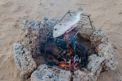 Pescados recién pescados que son asados a la parrilla sobre hoguera abierta hacia fuera en el desierto Fotos de archivo libres de regalías