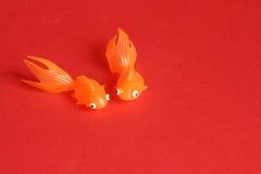 Pescados rojos fotos de archivo libres de regalías