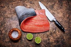 Pescados rojos frescos del filete de salmones en grunge fotos de archivo libres de regalías