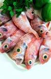 Pescados rojos sin procesar Fotografía de archivo