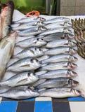 Pescados rusos frescos en el hielo en el mercado 15 del producto alimenticio Imagen de archivo