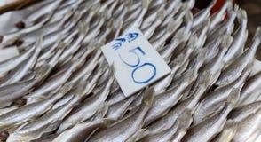 Pescados salados Fotos de archivo libres de regalías