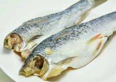 Pescados salados de los arenques foto de archivo libre de regalías