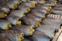 Pescados salados frescos en el mercado Fotografía de archivo libre de regalías