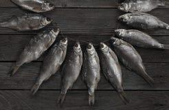 Pescados secados Fotografía de archivo libre de regalías