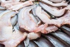 Pescados secados Foto de archivo libre de regalías