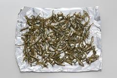 Pescados secados fritos de la anchoa en el papel de aluminio en Asia Imagenes de archivo