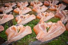 Pescados secos Fotos de archivo libres de regalías