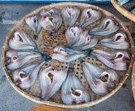 Pescados secos hacia fuera salados Fotos de archivo libres de regalías