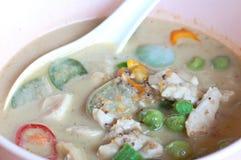 Pescados tailandeses del curry del verde del alimento Foto de archivo libre de regalías