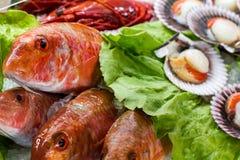 Pescados y cáscaras en el restaurante Fotos de archivo libres de regalías
