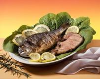 Pescados y carne Imagen de archivo libre de regalías