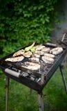 Pescados y carne en barbacoa Foto de archivo libre de regalías