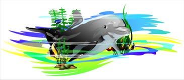 Pescados y delfín tropicales (Vector) Imagen de archivo
