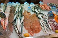 Pescados y mariscos en almacén de los pescados Imagen de archivo libre de regalías