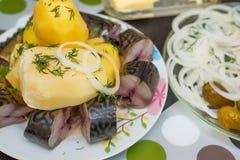 Pescados y patatas hervidas Fotografía de archivo