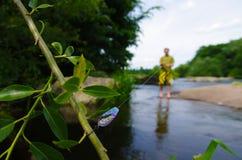 Pescando al fiume fotografia stock
