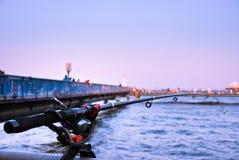 Pescando al parco di pesca di Honmoku Immagine Stock