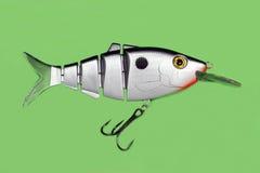 Pescando a atração Imagem de Stock