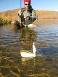 Pescando a atração Foto de Stock