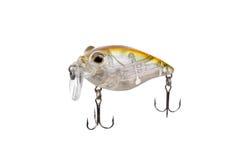 Pescando a atração para o predador de travamento isolado no fundo branco Imagem de Stock Royalty Free