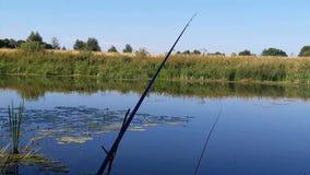 Pescando con i suoni della natura stock footage