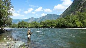Pescando dalla pesca con la mosca sul fiume La Russia Siberia Fiume Chelushman archivi video