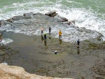 Pescando em Maukatia Maori Bay e em praia de Muriwai, Auckland, Nova Zelândia imagem de stock royalty free