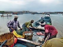 Pescando in India Fotografia Stock Libera da Diritti