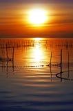Pescando in mare Fotografia Stock Libera da Diritti