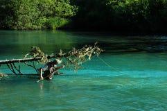 Pescando nel lago di cheakamus Fotografie Stock