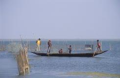 Pescando nel lago di chilka immagine stock libera da diritti